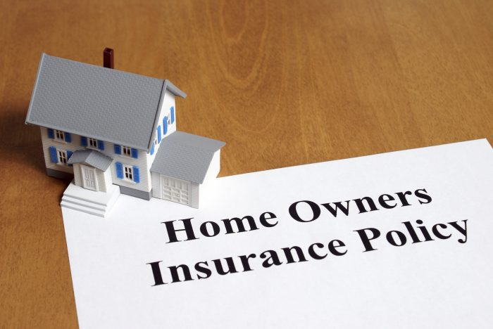 An insurance policy is an asset for any home owner.