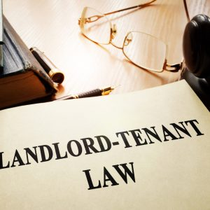 Landlords and Legalization: What budding weed laws may mean for Landlords