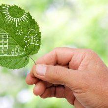 Ottawa's Eco-Friendly Communities to Watch